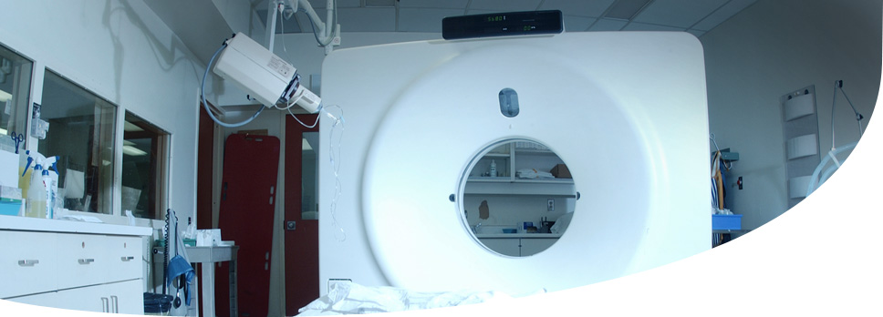CAT scan the 1979 Nobel Prize in Physiology or Medicine | SABLE Accelerator Network